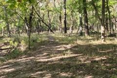 Kansas Flint Hills Cattle Ranch & Agricultural/Wind Farm for Sale – Lyon County