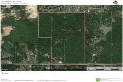 The Ridge at Pine Hills, Caddo Parish, 164 Acres +/-
