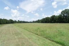 Allbritton Cattle Tract, Natchitoches Parish, 1,838 Acres +/-