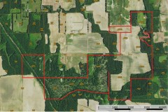 390± Acre Income Producing Hunting Property for Sale – Gallatin County Illinois