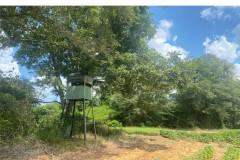 453 Acres in Itawamba County in Nettleton, MS