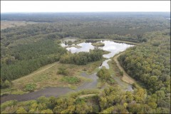 538.81 Acres in Holmes County in Vaughan, MS