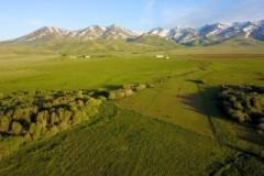 Lawson Ranch
