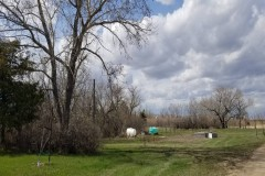 316 Ac. Prime pheasant land & House and Shop Portal, ND