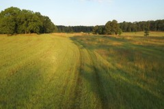 Four Mile Farm