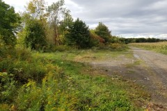 80 acres Tillable Farmland on Clyde River in Galen NY River Road