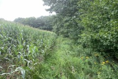 62 acres Farmland and Woodlands on the Hoosick River in Buskirk NY Route 67