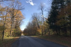 39 acres House with Garage in Hubbardsville NY 1261 Williams Road
