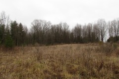 10 acres Building Lot in Palermo NY Island Road
