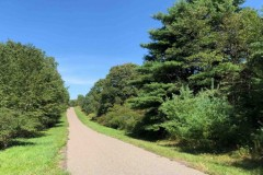 155 acres Gorgeous Gated Hunting Sanctuary with Fields in Nanticoke NY