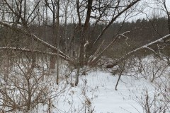 9.6 acres Hunting Land with Barn and Creek in Alfred NY Hartsville Hill Road