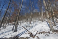 486 acres Hunting Retreat in Canisteo NY 3887 County Route 119 on the Canisteo River