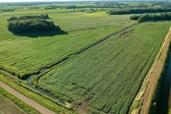 River View Farms LLC