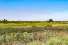 Bluff Road Hunting Ranch