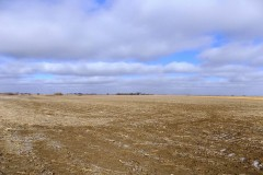Cropland with CRP/Pasture Mix! 179 Acres, Wright County, Iowa