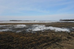 Productive Red River Valley Land! 140.99 Acres, Richland County, North Dakota