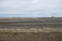 Productive Farmland! 155 Acres, Palo Alto County, Iowa