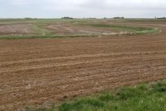 Productive Upland Soils!