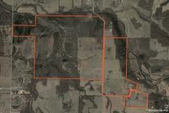 Cattle Ranch in Willard, Missouri