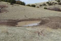Sawmill Creek Ranch