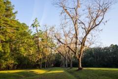 Twin Oaks Plantation