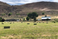 Well-Equipped Hobby Farm For Sale in Western NV