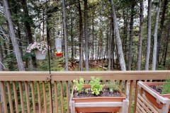 Cold Stream Pond Lakefront Home For Sale in Lowell, ME