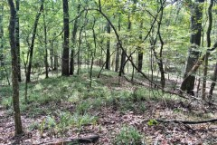 Hunting & Recreational Land For Sale in East Baton Rouge Parish, LA