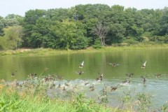 Private Hunting Club & Recreational Land For Sale in Hugo, MN