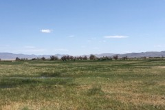 Waterfowl Hunting & Cattle Ranch For Sale in Fallon, NV