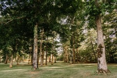 Luxury Home & Recreational Land For Sale in Fairview, TN