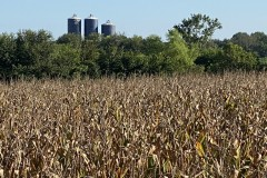 TN Crop & Game Farm For Sale
