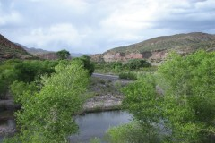 Greenlee County, AZ Riverfront Cattle Ranch with Home For Sale