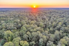 Saint Francisville, LA Hunting & Recreational Ranch For Sale