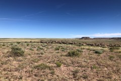 Navajo County, AZ Cattle Ranch with Mineral Rights For Sale