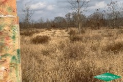 32 ac - WRP Hunting Tract - PRICE REDUCED