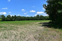 42 Acres of Development Land For Sale in Isle of Wight County VA!