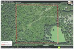 Bo's Back 40 Tract, Winn Parish, 40 Acres +/-