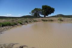 Elk Basin Ranch, Catron County, NM