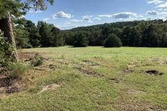 Estate outside Shirley Arkansas