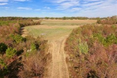 162.49 Acres of Timber and Hunting Land For Sale in Craven County NC!