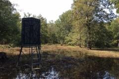 Beaucoup Creek Tract, Caldwell Parish, 600 Acres +/-