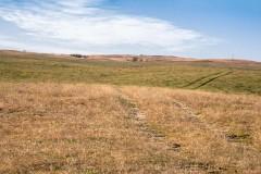 Zeman Ranch