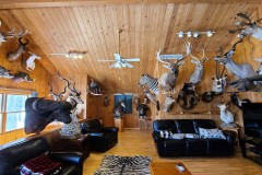 Branch County Michigan 200+/- acre Whitetail and Turkey Mecca