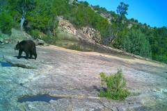 Rio Rojo Canyon Ranch