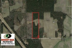 19.75 acres of Hunting and Timberland for Sale in Columbus County NC!