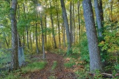 Virginia Recreational Retreat and Farm