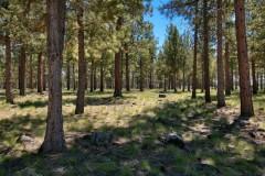 0 Skyline Ranch 200-300