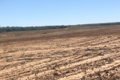LA - Franklin Poland P&A Farms 384 acres +- Data Sheet