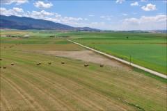 Jensen Farm